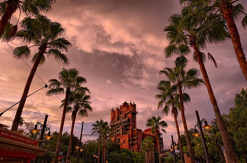 Walt Disney World Closures and Rehabs February 2014