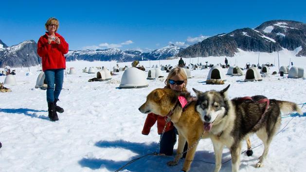 Disney Cruise Alaska Dog Sledding Port Adventures