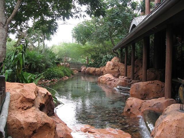 Disney World Animal Kingdom Jiko RestaurantDisney