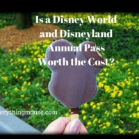 Disney World and Disneyland Annual Pass