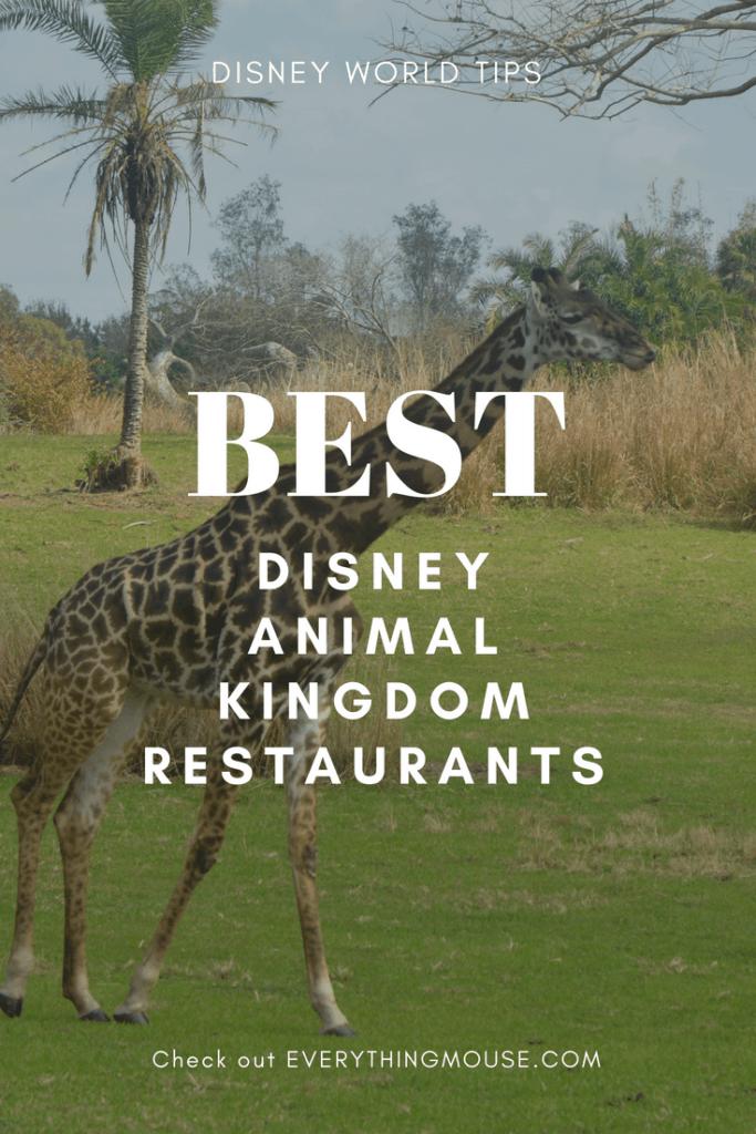 bestdisneyanimalkingdomrestaurants