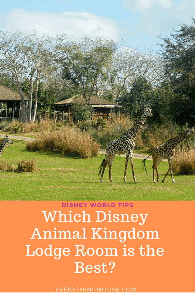 disneyanimalkingdomlodgerooms