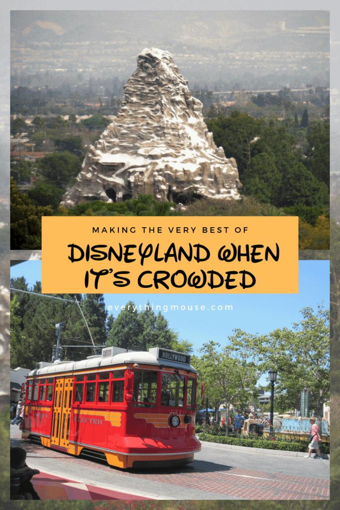 Disneyland Crowded