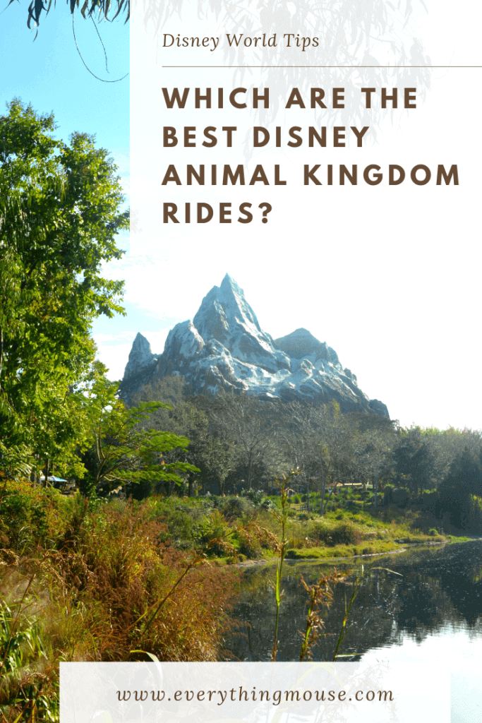 best disney animal kingdom rides