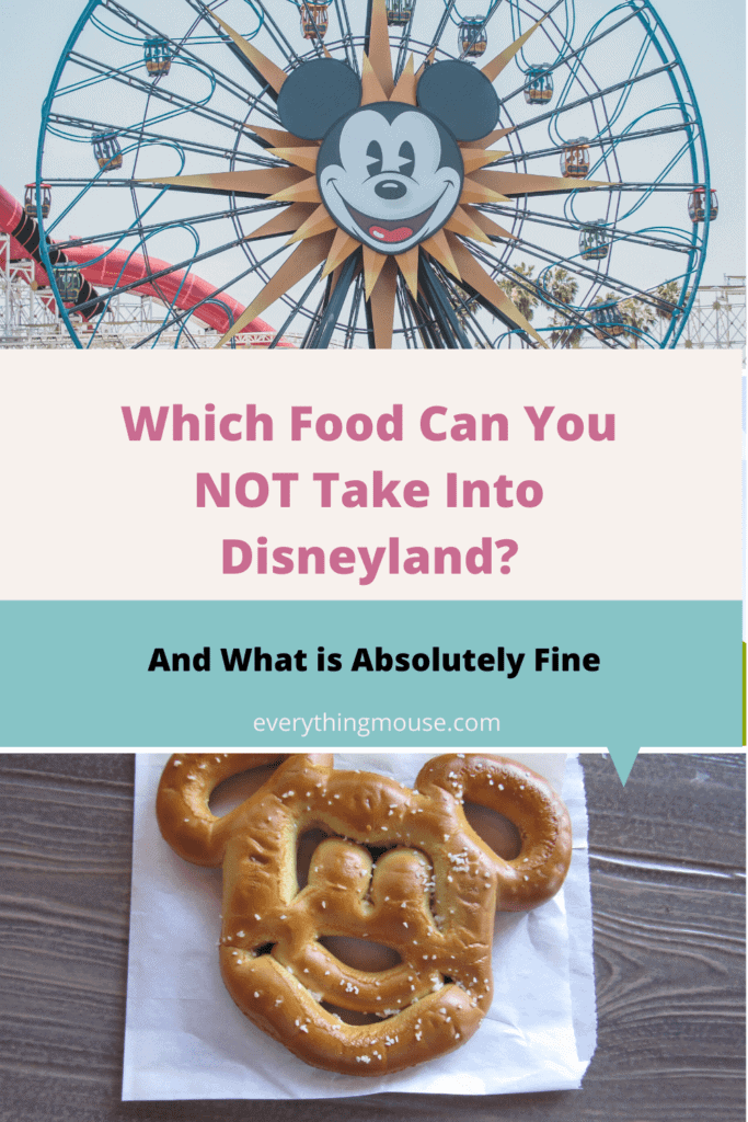 Which Food Can You NOT Take Into Disneyland_