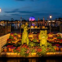 free family activities at Walt Disney World?